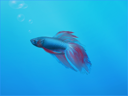 Windows 7 fish